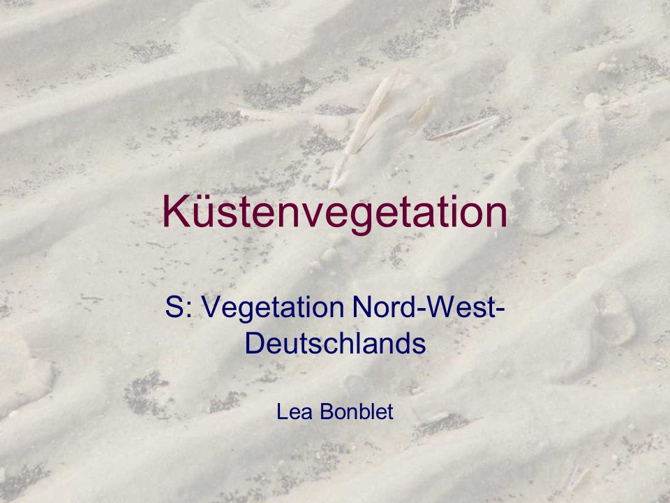 S: Vegetation Nord-West-Deutschlands Lea Bonblet