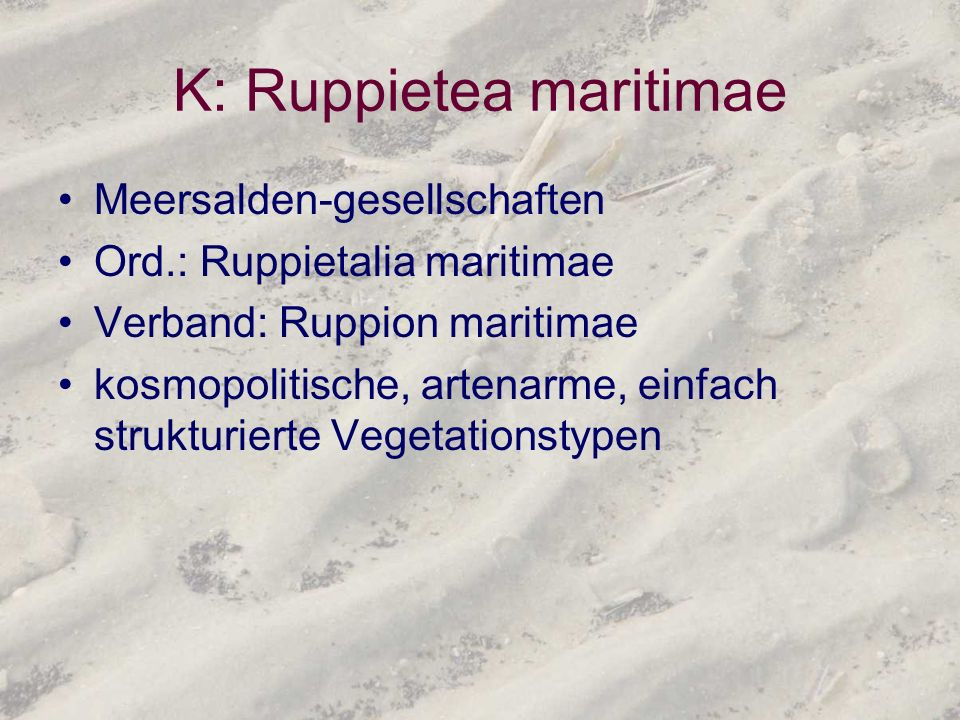 K: Ruppietea maritimae