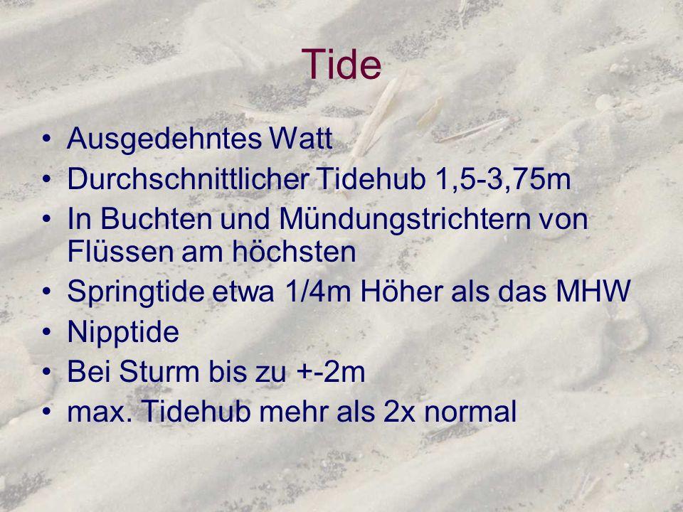 Tide Ausgedehntes Watt Durchschnittlicher Tidehub 1,5-3,75m