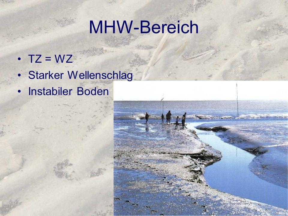MHW-Bereich TZ = WZ Starker Wellenschlag Instabiler Boden