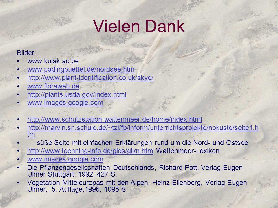 Vielen Dank Bilder: www.kulak.ac.be www.padingbuettel.de/nordsee.htm