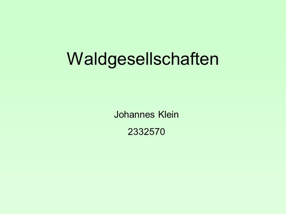 Waldgesellschaften Johannes Klein 2332570
