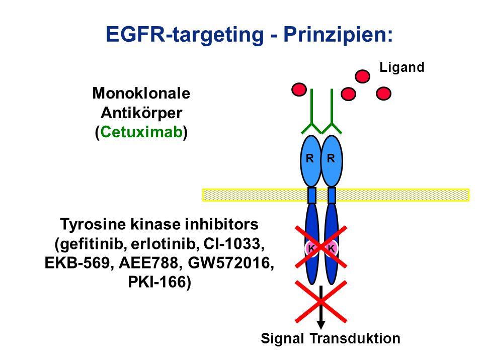 EGFR-targeting - Prinzipien: