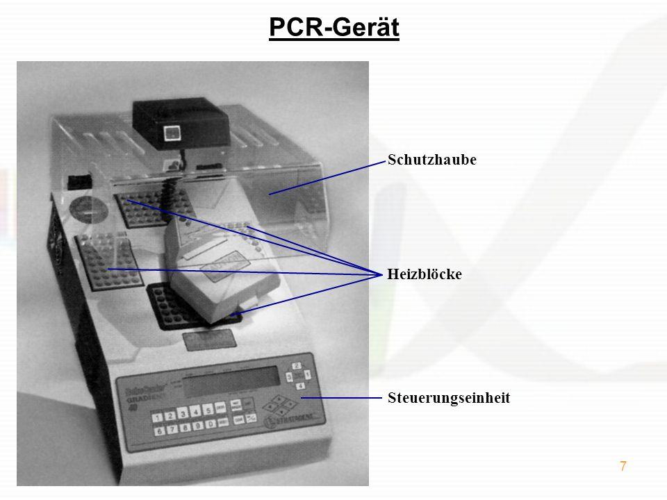 PCR-Gerät Schutzhaube Heizblöcke Steuerungseinheit