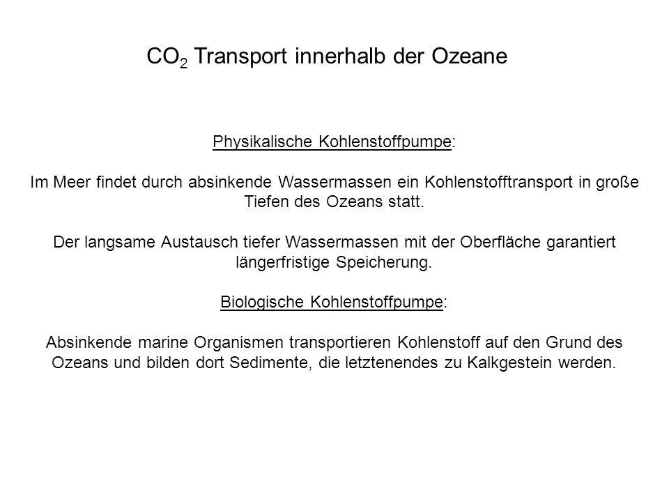 CO2 Transport innerhalb der Ozeane