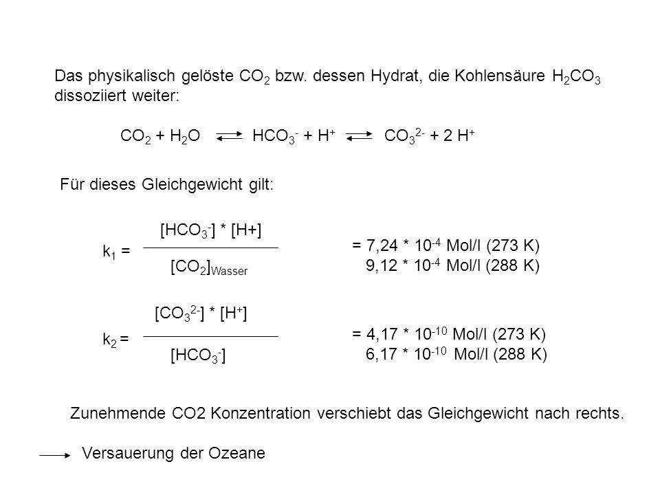 Das physikalisch gelöste CO2 bzw. dessen Hydrat, die Kohlensäure H2CO3