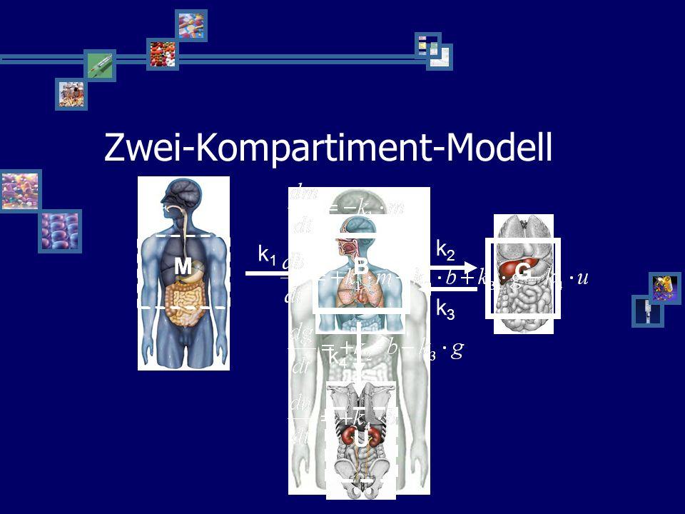 Zwei-Kompartiment-Modell
