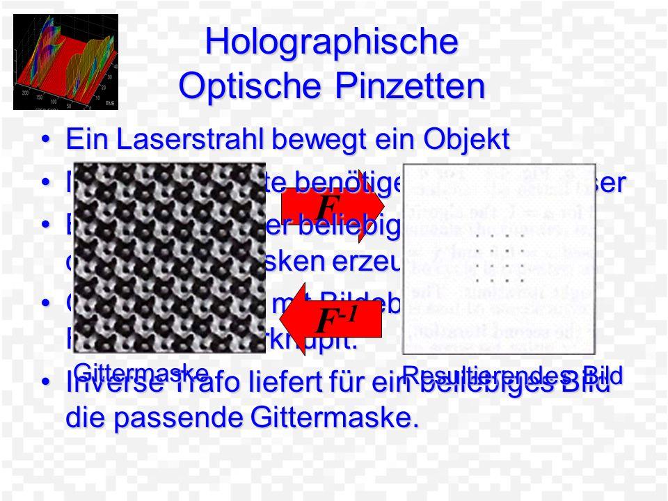 Holographische Optische Pinzetten