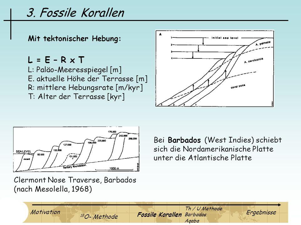 3. Fossile Korallen L = E – R x T Mit tektonischer Hebung: