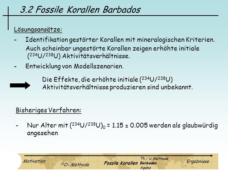 3.2 Fossile Korallen Barbados