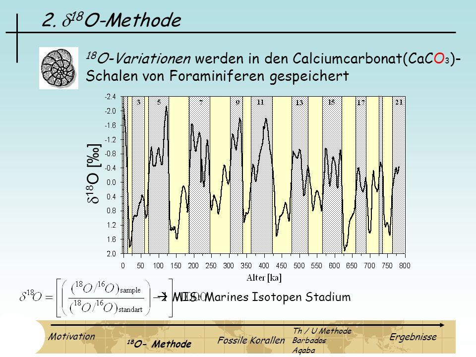 2. d18O-Methode 18O-Variationen werden in den Calciumcarbonat(CaCO3)- Schalen von Foraminiferen gespeichert.