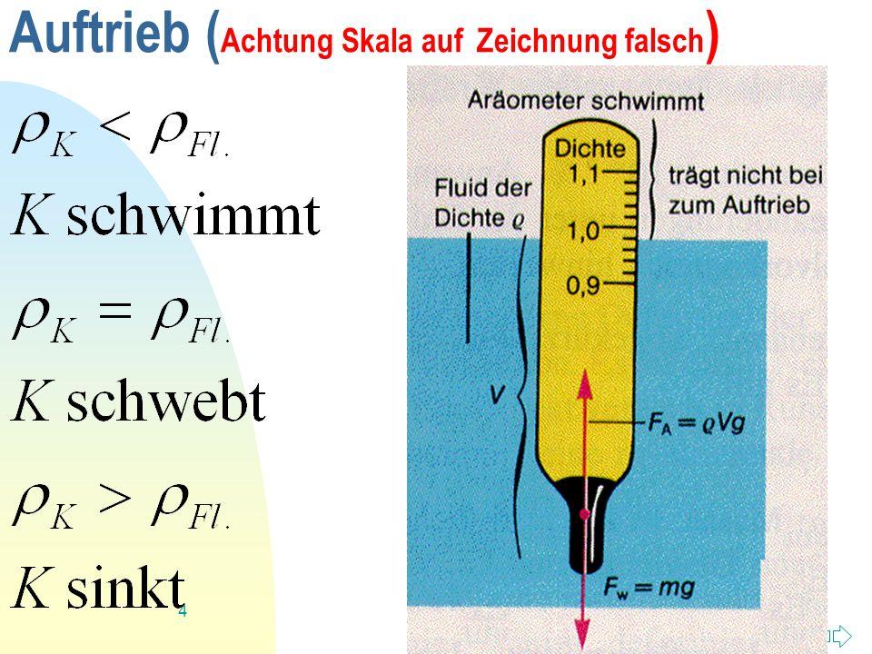 Auftrieb (Achtung Skala auf Zeichnung falsch)