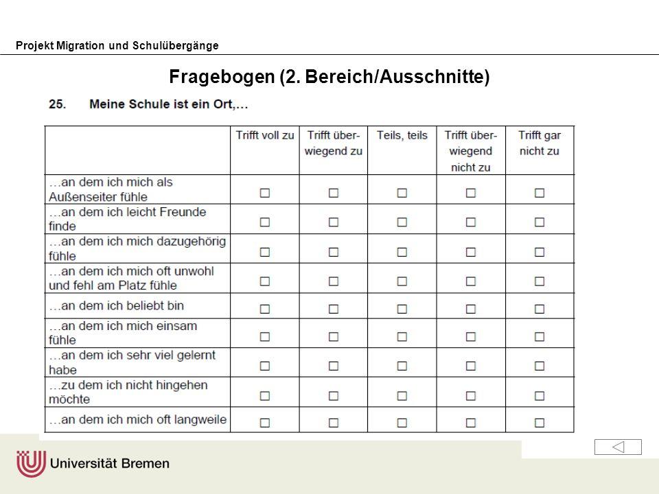 Fragebogen (2. Bereich/Ausschnitte)