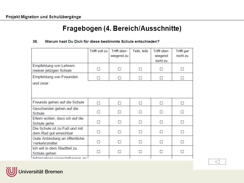 Fragebogen (4. Bereich/Ausschnitte)