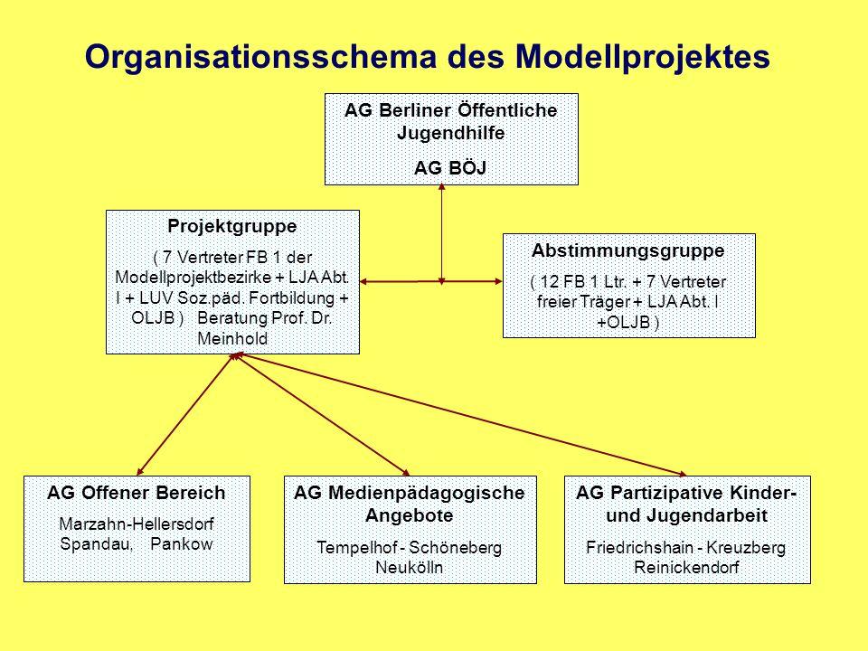 Organisationsschema des Modellprojektes