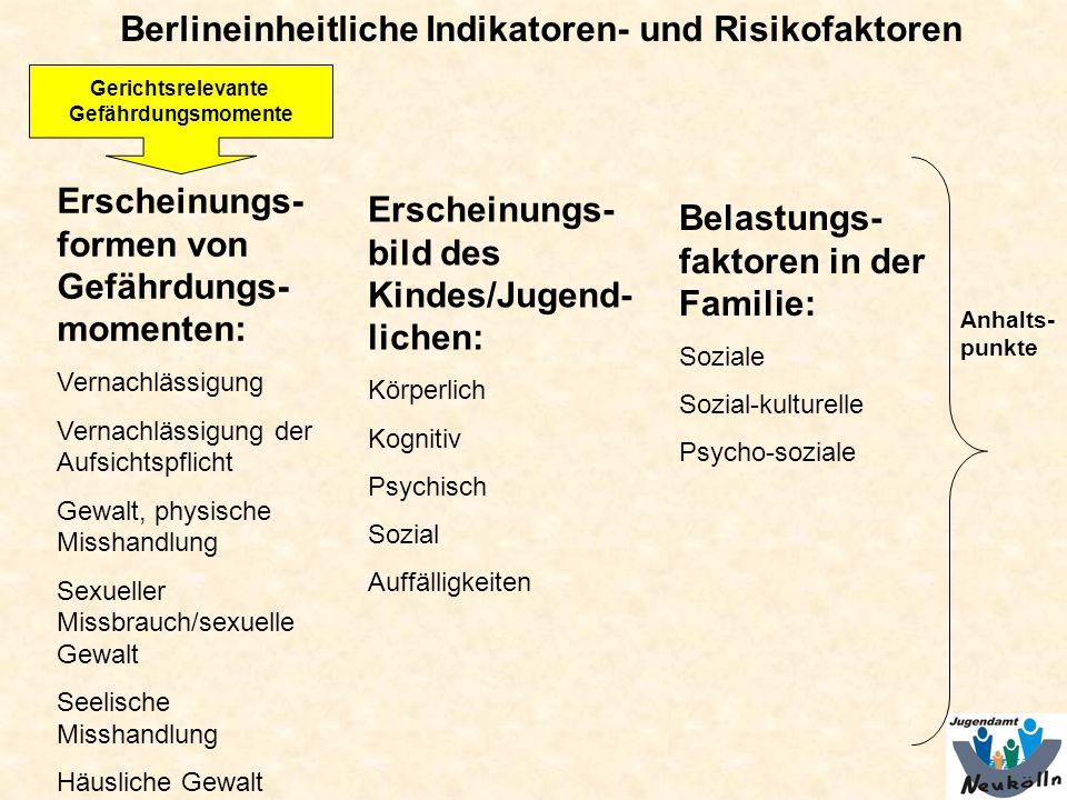 Berlineinheitliche Indikatoren- und Risikofaktoren