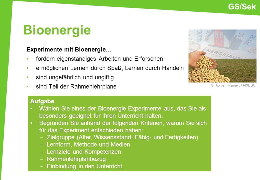 Bioenergie GS/Sek Experimente mit Bioenergie…