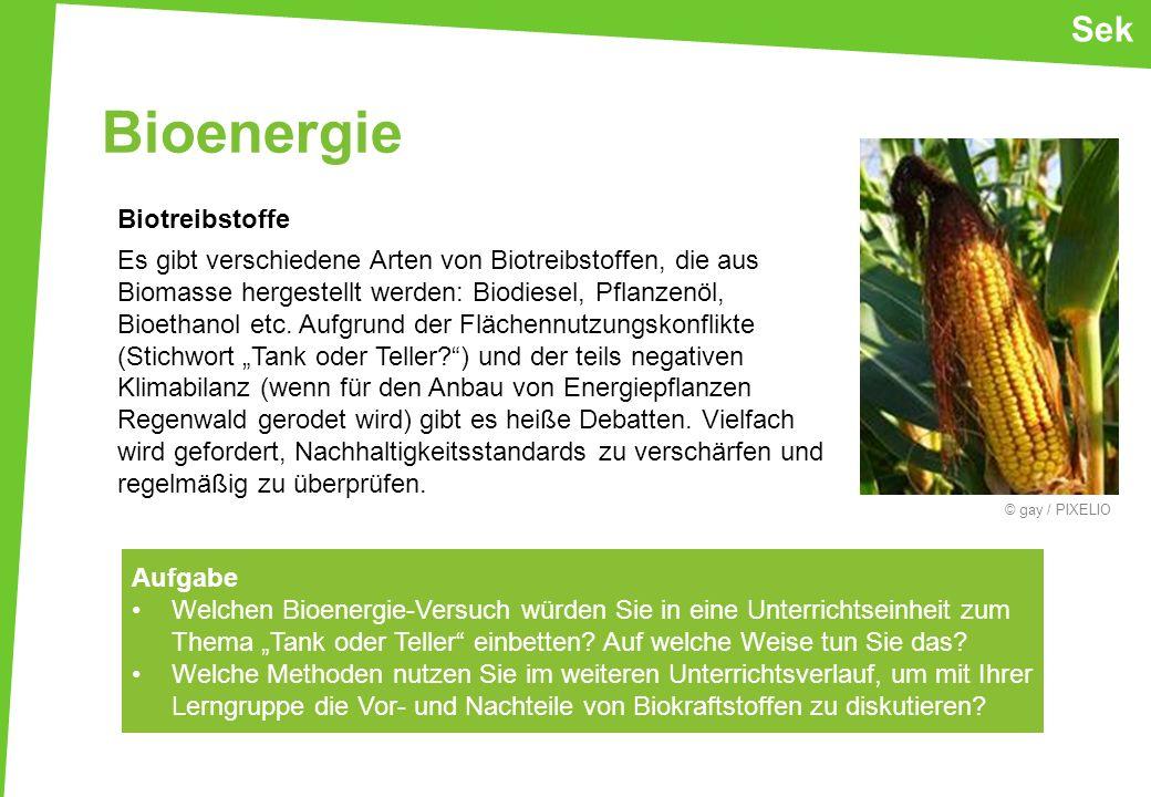 Bioenergie Sek Biotreibstoffe