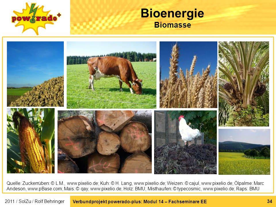 Bioenergie Biomasse Rohstoffe für Bioenergie