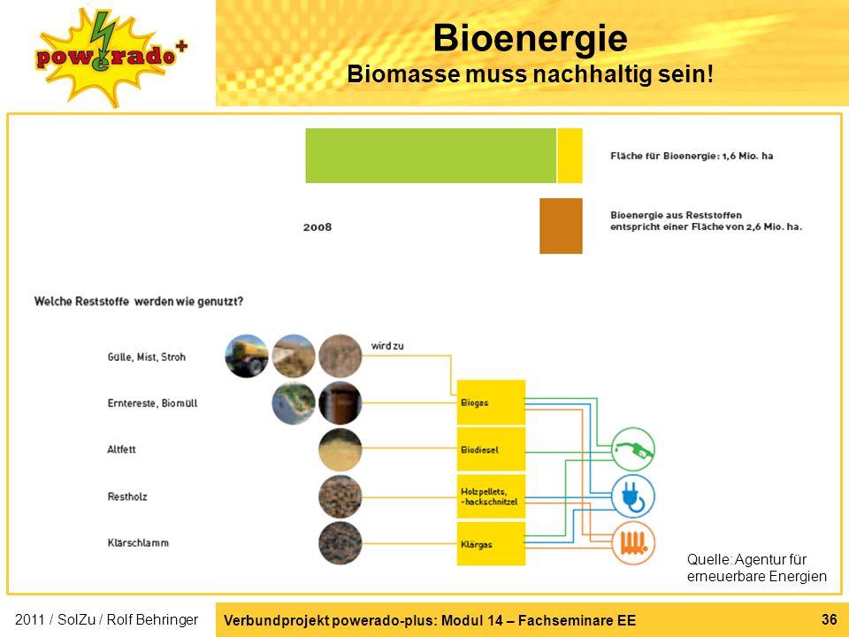 Bioenergie Biomasse muss nachhaltig sein!
