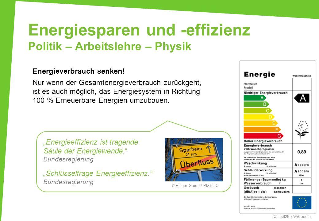 Energiesparen und -effizienz Politik – Arbeitslehre – Physik