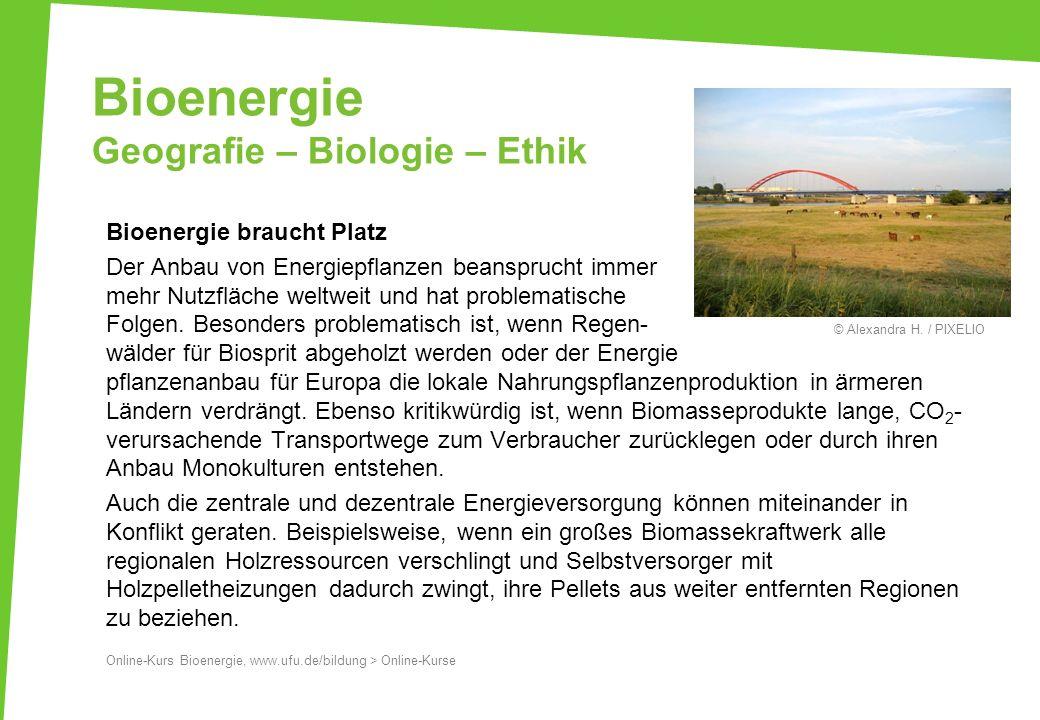 Bioenergie Geografie – Biologie – Ethik