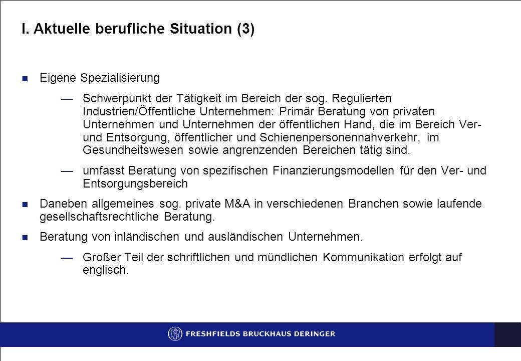I. Aktuelle berufliche Situation (3)
