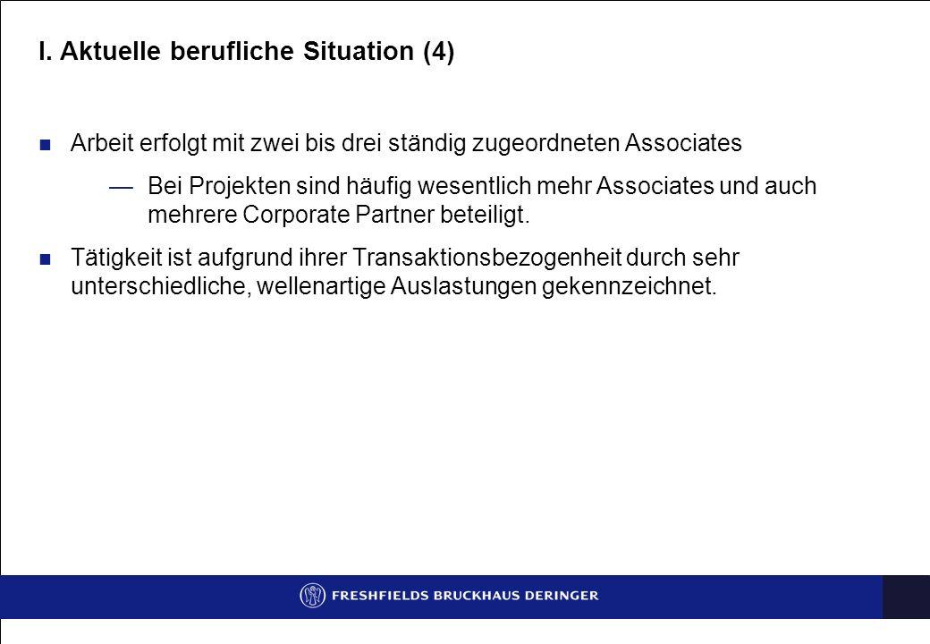 I. Aktuelle berufliche Situation (4)