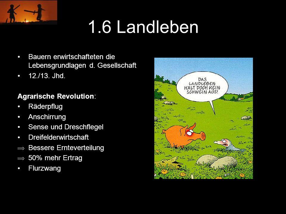 1.6 Landleben Bauern erwirtschafteten die Lebensgrundlagen d. Gesellschaft. 12./13. Jhd. Agrarische Revolution: