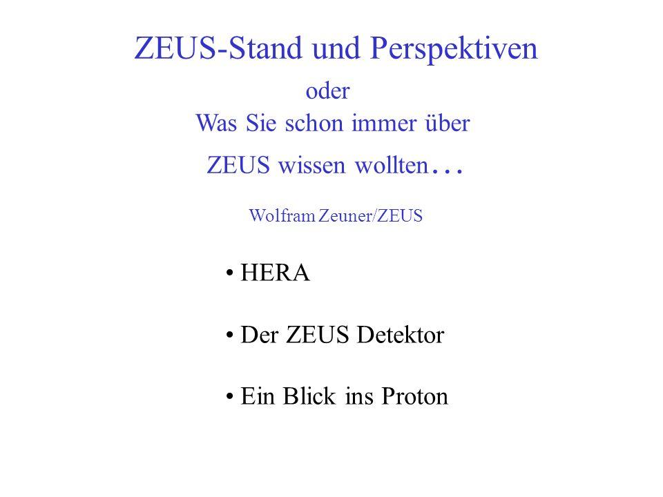 ZEUS-Stand und Perspektiven
