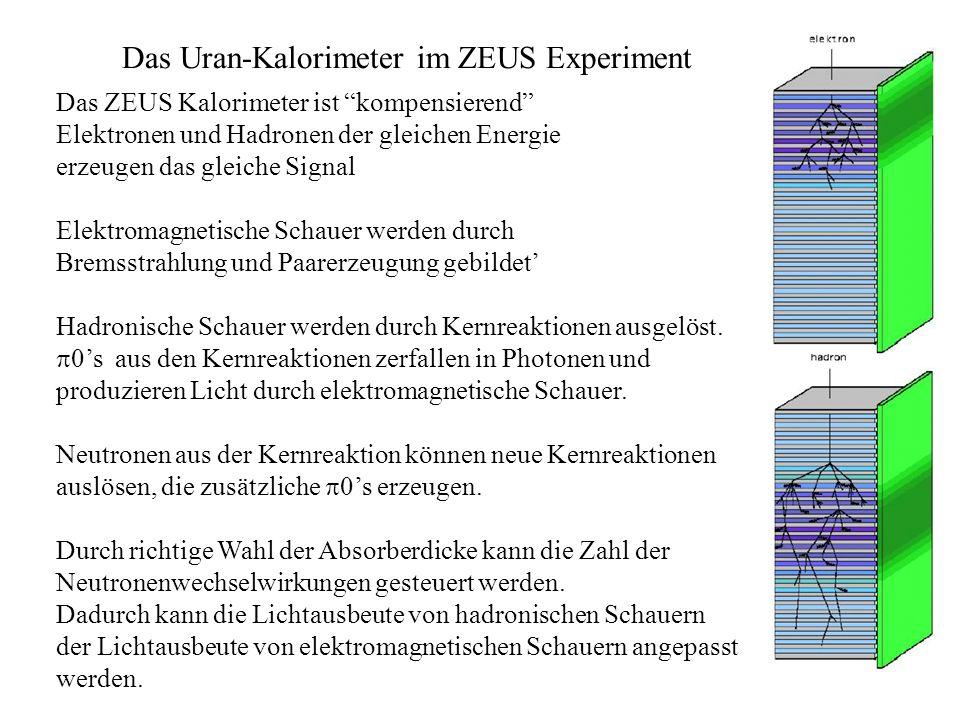 Das Uran-Kalorimeter im ZEUS Experiment