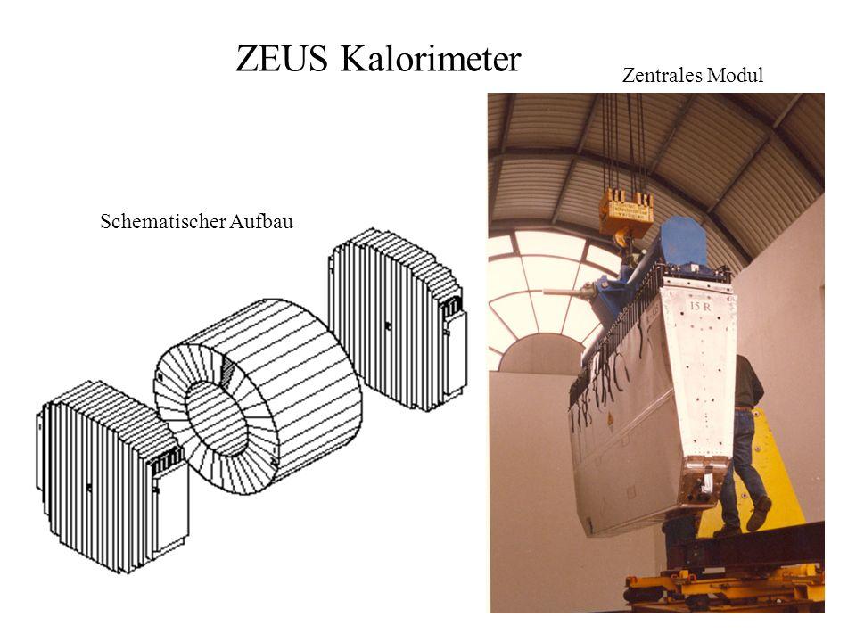 ZEUS Kalorimeter Zentrales Modul Schematischer Aufbau