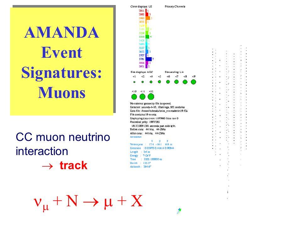 AMANDA Event Signatures: Muons