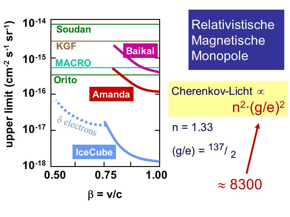 Relativistische Magnetische Monopole