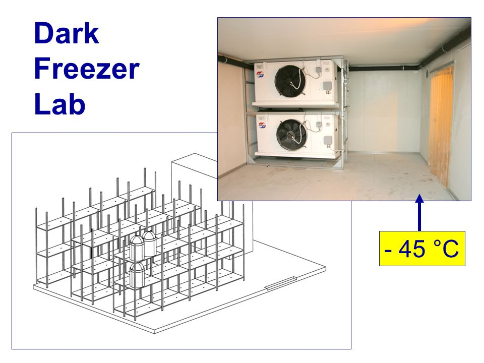 Dark Freezer Lab - 45 °C