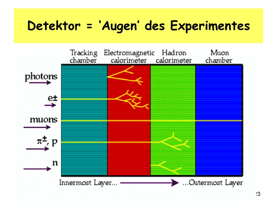 Detektor = 'Augen' des Experimentes