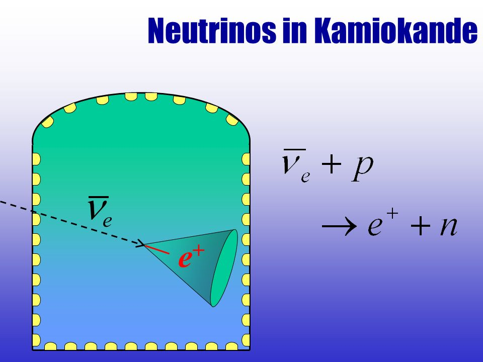 Neutrinos in Kamiokande