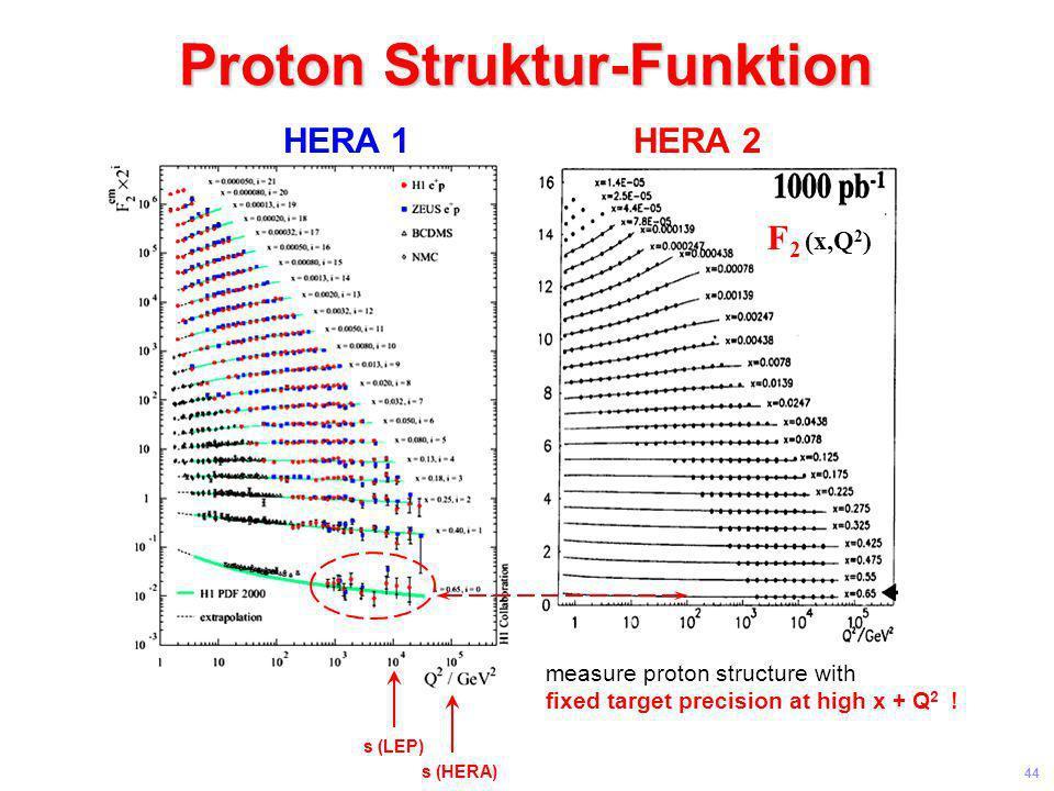 Proton Struktur-Funktion