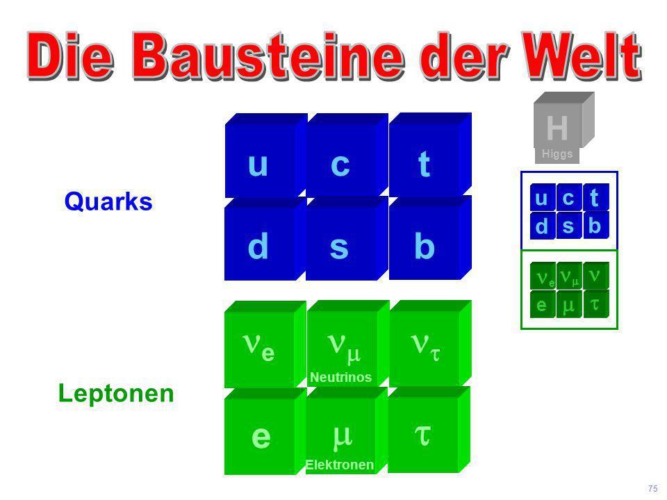  u b c t d s e t e m  H Quarks t Leptonen u b c d s ne nm n m e