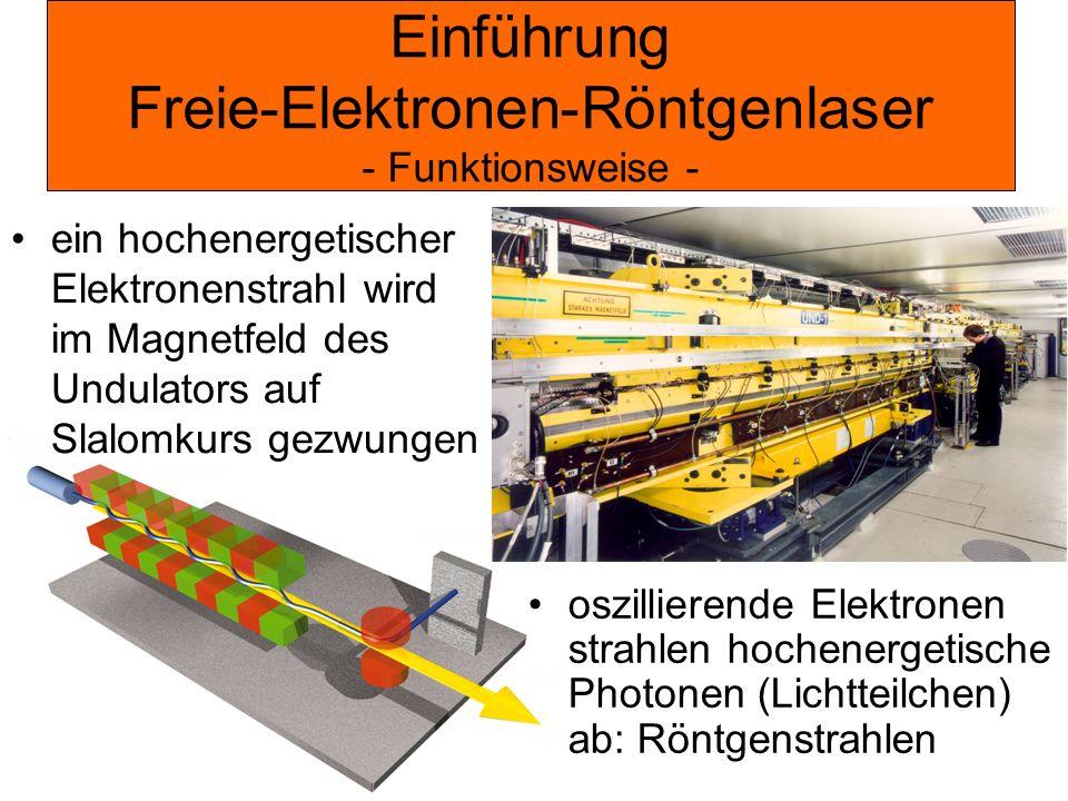 Einführung Freie-Elektronen-Röntgenlaser - Funktionsweise -