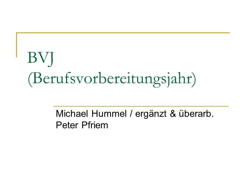 BVJ (Berufsvorbereitungsjahr)