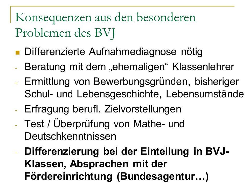Konsequenzen aus den besonderen Problemen des BVJ
