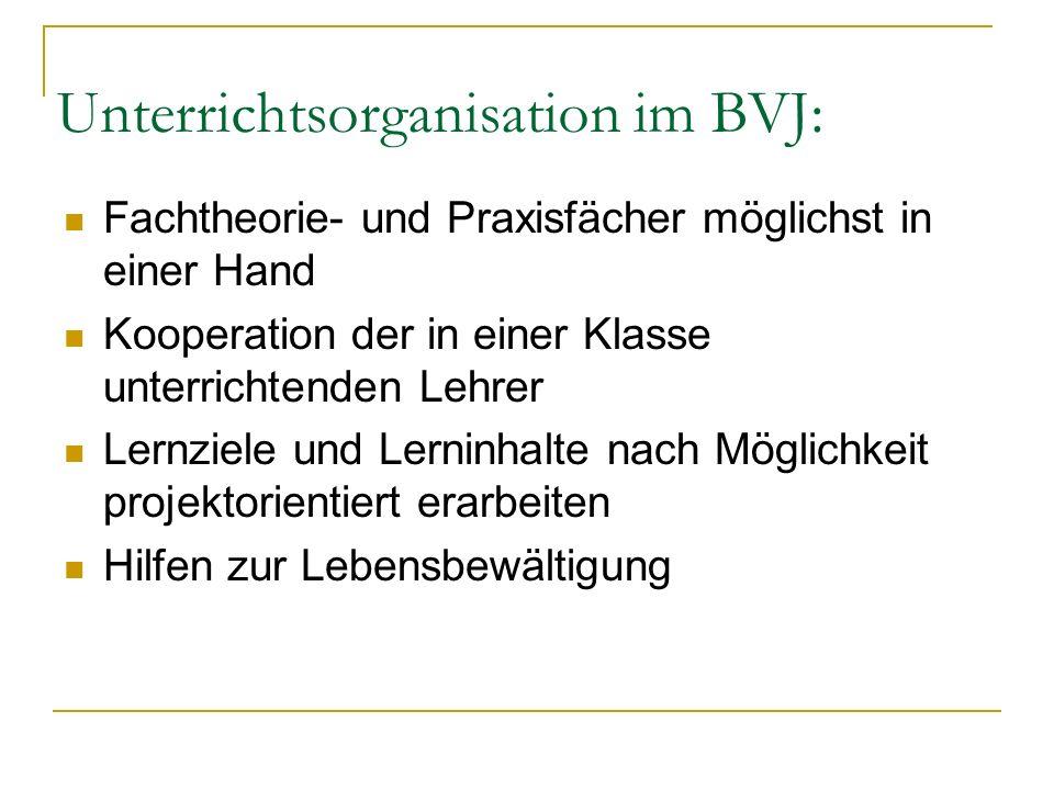 Unterrichtsorganisation im BVJ: