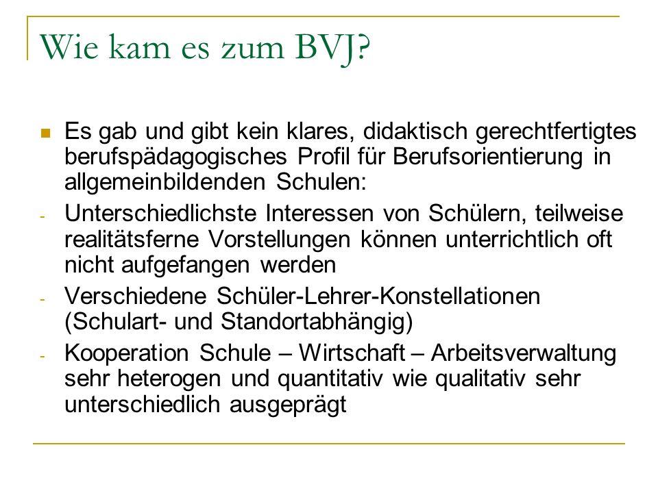 Wie kam es zum BVJ