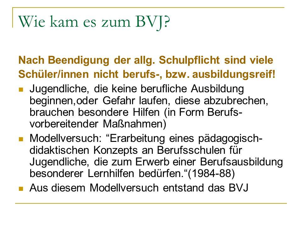 Wie kam es zum BVJ Nach Beendigung der allg. Schulpflicht sind viele