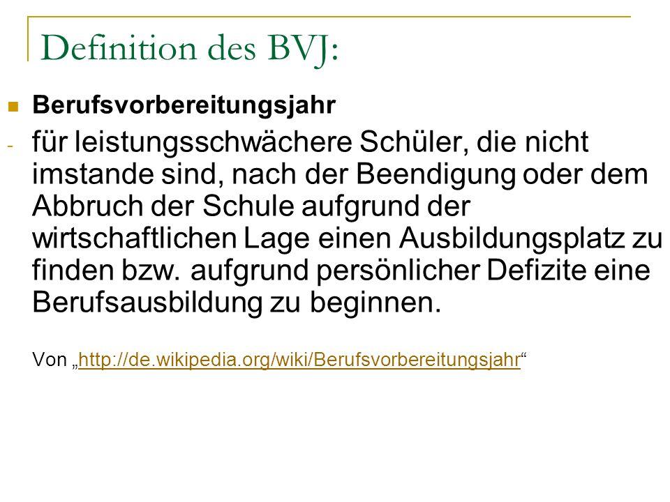 Definition des BVJ: Berufsvorbereitungsjahr.