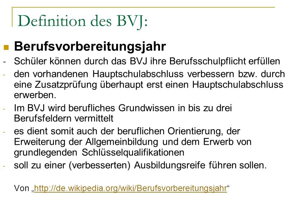 Definition des BVJ: Berufsvorbereitungsjahr