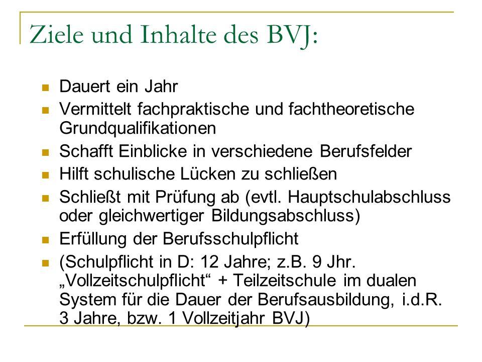 Ziele und Inhalte des BVJ: