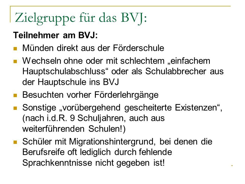 Zielgruppe für das BVJ: