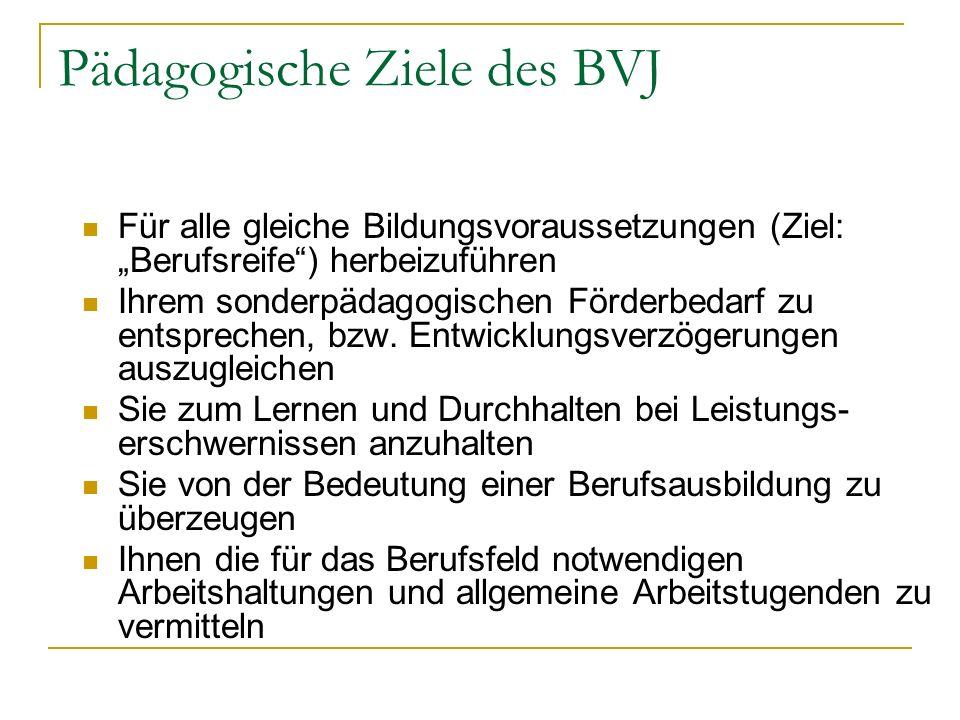 Pädagogische Ziele des BVJ